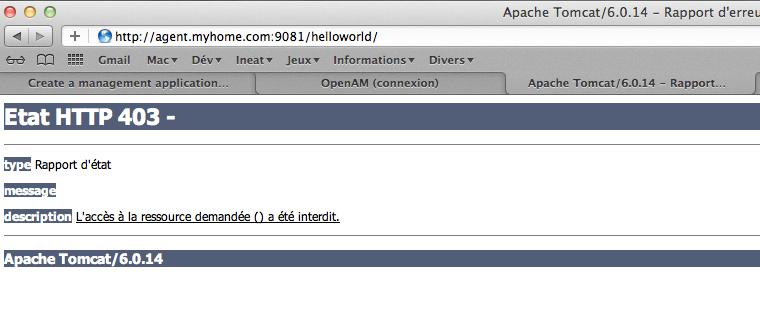 OpenAM - Configurer - Step 3 - Installation agent