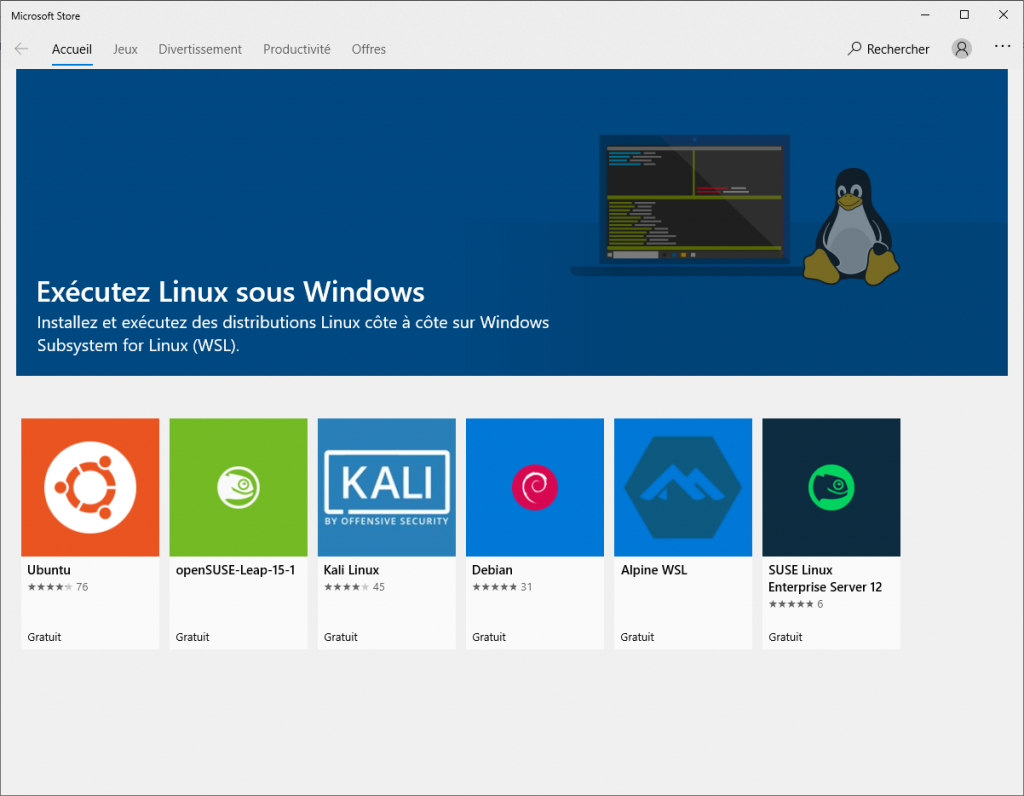 Microsoft Store WSL